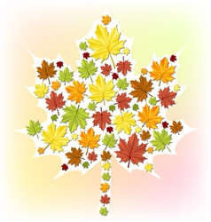 Autumn leaf made from small leaves vector image vector image