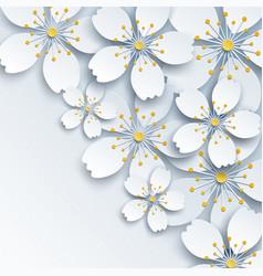 Background with white sakura flower vector