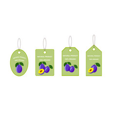 design labels with ripe tasty plum vector image