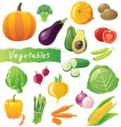 GREAT vegetables set vector image vector image