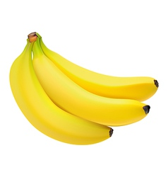 3bananas vector
