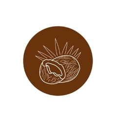 Icon coconut in the contours vector