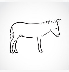 a donkey on white background wild animals vector image vector image