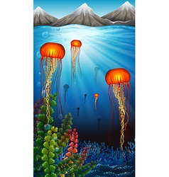 Jellyfish swimming under the ocean vector