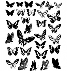 butterflies party vector image vector image