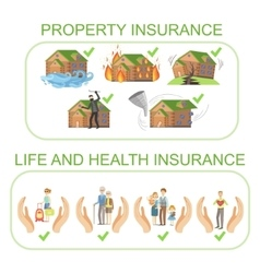 Property life and health insurance infographic vector