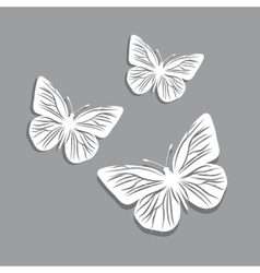 White paper butterflies on gray background vector