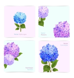 Hydrangea cards set vector