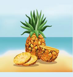 pineapple fruit fresh harvest - beach background vector image