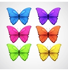 Collection of color butterfly icons vector