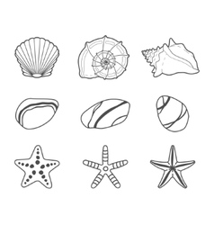Sea shells stars and stones icon set vector