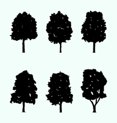 realistic tree silhouette collection vector image