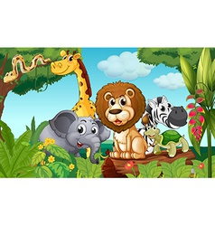 A forest with a group of animals vector