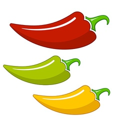 Hot chilli vector