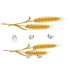 Cartoon ears of wheat character on white vector