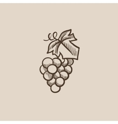 Grape sketch icon vector