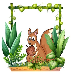 A squirrel with a nut vector image