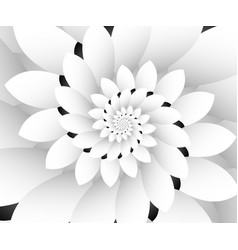 Monochrome floral design background wallpaper vector