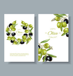olive vertical banners vector image vector image