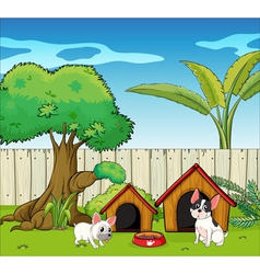 The two cute dogs vector image vector image