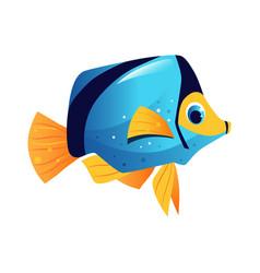 Blue surgeon fish sea tropical aquarium fish vector