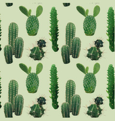 cactus plant seamless pattern exotic tropical vector image vector image