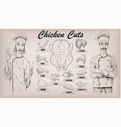Chicken meat carcass cut parts chops vector
