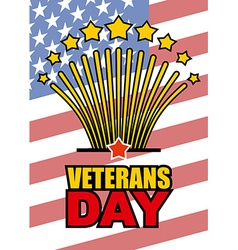 Veterans Day Salute honoring American heroes on vector image
