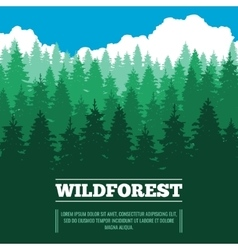Wild landscape with fir trees coniferous forest vector image