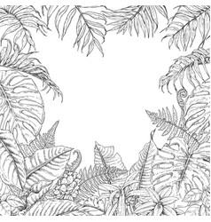 tropical plants frame vector image