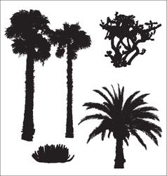 Black silhouettes of palms and cacti vector
