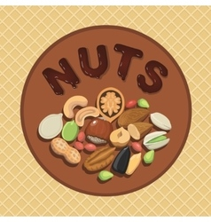 Nut collection with raw food mix and Round label vector image