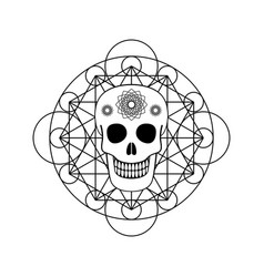 ornamental skull with geometric symbol vector image vector image