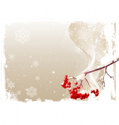 ash tree branch winter background vector image vector image