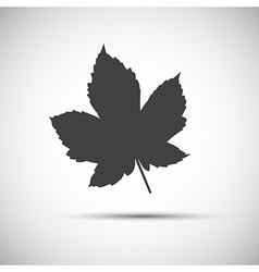 Maple leaf simple grey icon vector image vector image