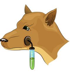 Pavlov s dog experiments vector