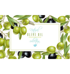 olive horizontal banner vector image