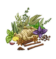 Heap of culinary herbs and spices full color vector