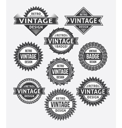 Set of retro vintage badge and label design set vector image