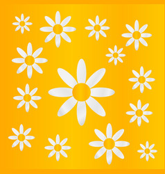 chamomiles on yellow background vector image vector image