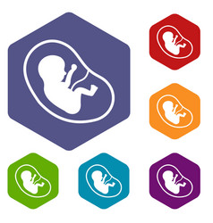Fetus icons set hexagon vector