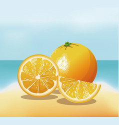 Orange fruit fresh harvest - beach background vector