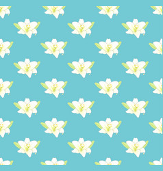 white lily flower on pastel blue background vector image vector image