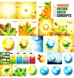 Various nature autumn and summer concepts vector image