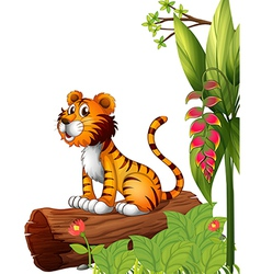 A tiger above a trunk vector