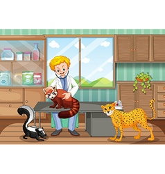 Vet healing wild animals in the clinic vector
