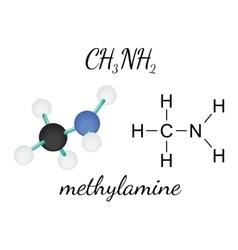 Ch3nh2 methylamine molecule vector