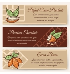 Chocolate and cocoa banner templates vector