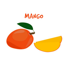 Ripe yummy mango on a white backgroun vector
