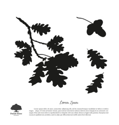 Black silhouette of the oak branch vector image vector image
